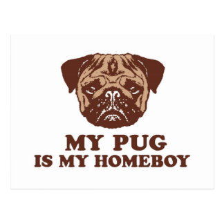 My Pug is my Homeboy Postcard