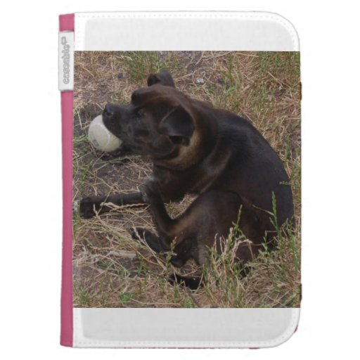 My puppy Missy Case For The Kindle