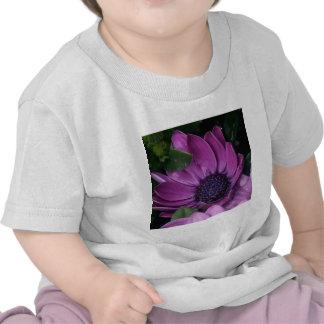 My Purple Dream T Shirts