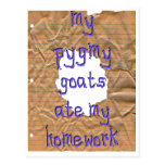 My Pygmy Goats Ate My Homework Post Cards