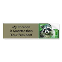 My Raccoon is smarter than your President Bumper Sticker