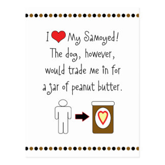My Samoyed Loves Peanut Butter Postcard