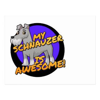 My Schnauzer is awesome Postcard