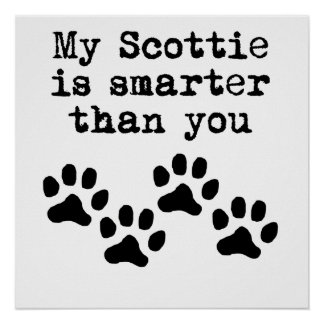 My Scottie Is Smarter Than You Poster