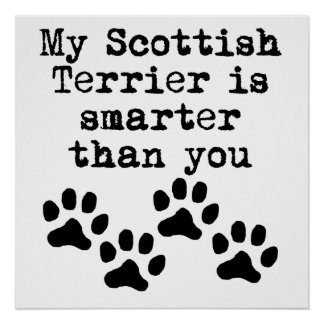 My Scottish Terrier Is Smarter Than You Poster