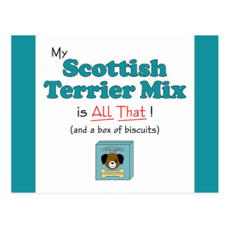 My Scottish Terrier Mix is All That! Postcard