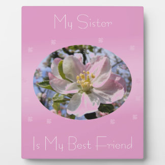 My Sister Is My Best Friend Apple Blossom Plaque