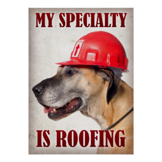 My Specialty is Roofing Poster