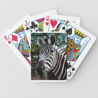 My  Strippy Friend Bicycle Playing Cards