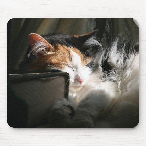 My sunbeam mouse pad