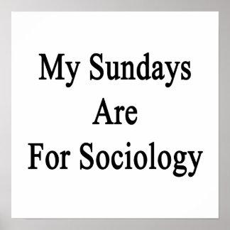 My Sundays Are For Sociology Print