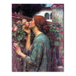 My_Sweet_Rose Postcard