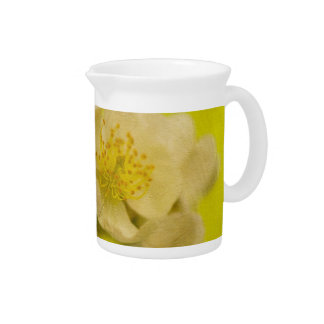 My Sweet Wild Rose Pitcher by Lois Bryan