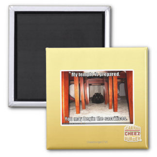 My temple is prepared. 2 inch square magnet