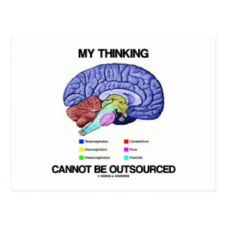 My Thinking Cannot Be Outsourced (Brain Anatomy) Postcard