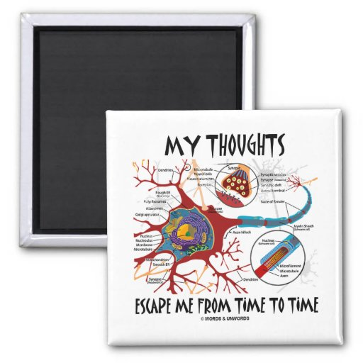My Thoughts Escape Me From Time To Time Fridge Magnets