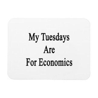 My Tuesdays Are For Economics Vinyl Magnet