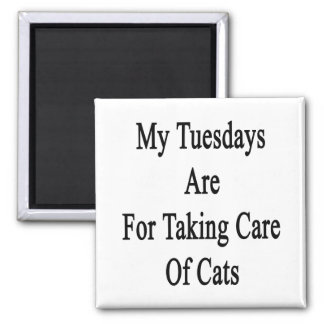 My Tuesdays Are For Taking Care Of Cats 2 Inch Square Magnet