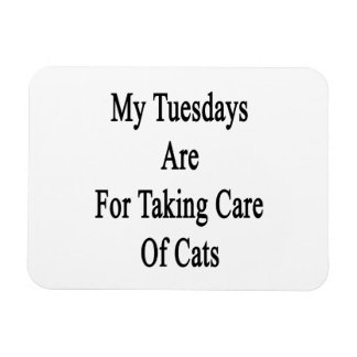 My Tuesdays Are For Taking Care Of Cats Rectangular Photo Magnet