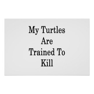 My Turtles Are Trained To Kill Poster