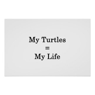 My Turtles Equals My Life Poster