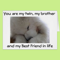 MY TWIN BROTHER /BEST FRIEND ON YOUR BIRTHDAY CARD