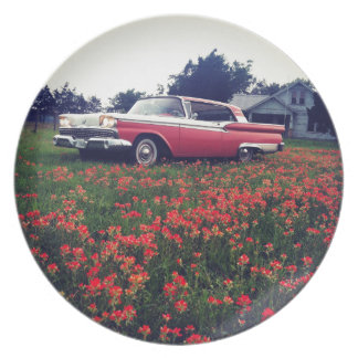 My Vintage Life - Texas Wildflowers & Ford Galaxie Party Plate