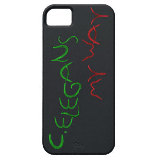 my way iPhone 5 covers