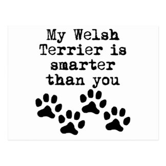 My Welsh Terrier Is Smarter Than You Postcard