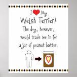 My Welsh Terrier Loves Peanut Butter Print
