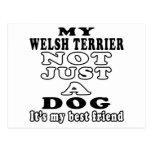 My Welsh Terrier Not Just A Dog Postcard