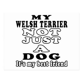 My Welsh Terrier Not Just A Dog Post Cards