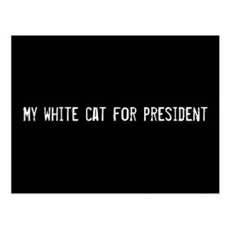 My white cat for president postcard
