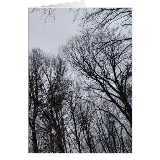 My Winter Sky Greeting Card