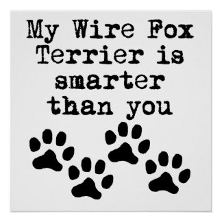 My Wire Fox Terrier Is Smarter Than You Poster