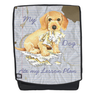 My Wirehaired Dachshund Ate my Lesson Plan Backpack