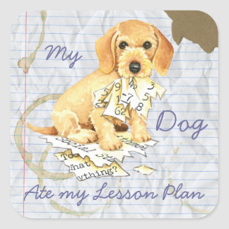 My Wirehaired Dachshund Ate my Lesson Plan Square Sticker