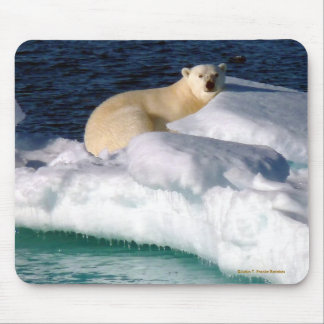 My World is melting! Mouse Pad