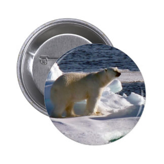 My World is melting! Pinback Button