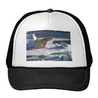 My World is melting! Trucker Hat