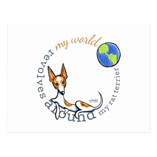 My World Red White Rat Terrier Postcard