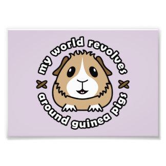 My World Revolves...Guinea Pig Print Art Photo