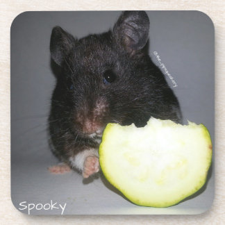 My Zucchini Coaster