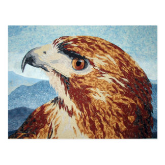 Mya - Red-tail Hawk Postcard