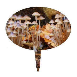 Mycena Inclinata Clustered Bonnet Mushroom Fungi Cake Toppers