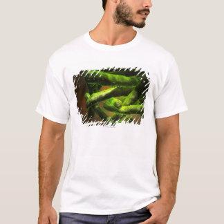 Mycobacterium Tuberculosis T-Shirt