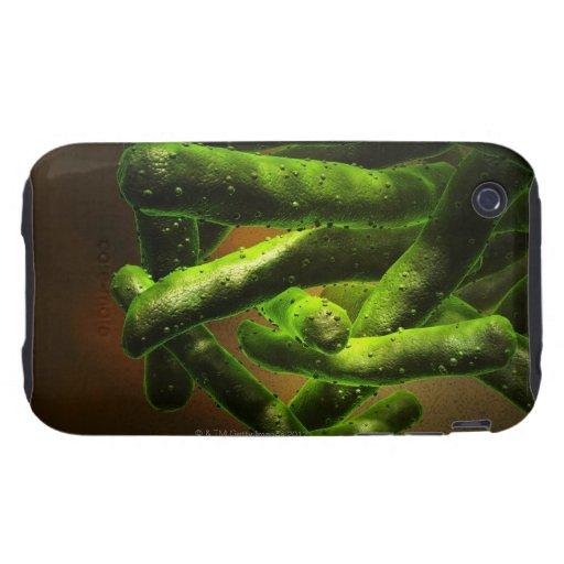 Mycobacterium Tuberculosis Tough iPhone 3 Cover