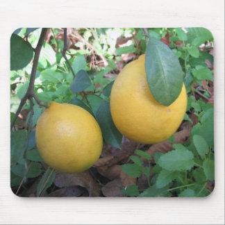 Myers Lemons Mousepad