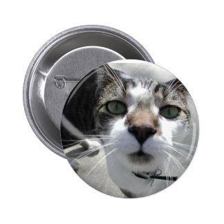 MYKitty Cat Items Pin