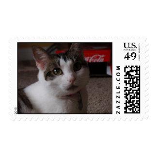 Myla 2 postage stamp  PS3
